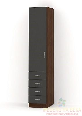 Шкаф РИО-1.10